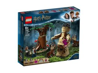 LEGO Harry Potter Запретный лес: встреча Амбриджа (75967)